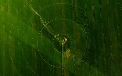 L'Acupuncture et le Weiqi, l'énergie de défense